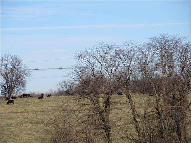 Land for Sale at TBD Cowger Road Peculiar, Missouri 64078 United States